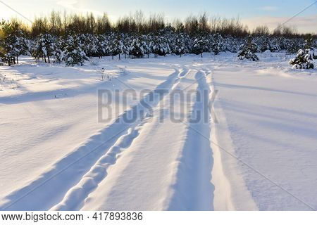 Snowy Road In Winter Forest On Sunset Background. Awesome Winter Landscape. A Snow-covered Path Amon