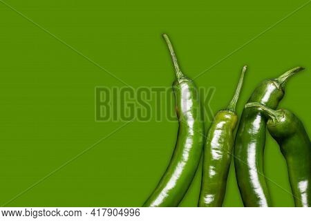 Green Chili Peppers Isolated. Vibrant Color Chili Pepper. Hot Spicy Food Ingredient. Empty Copy Spac
