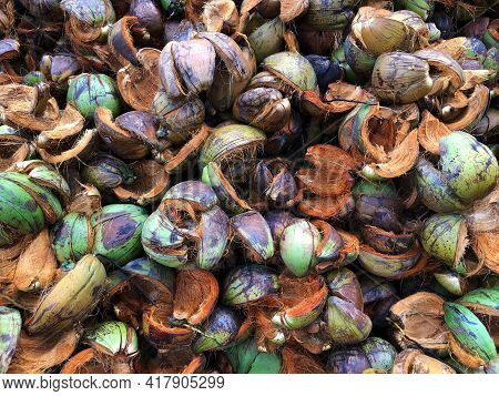 Waste Of Coconut Husks. Coconut Shell Is An Agricultural Waste And Is Available In Plentiful Quantit