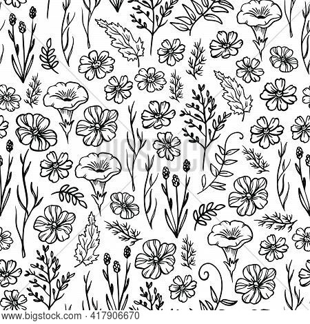 Small Wild Flower Monochrome Floral Sketch With Campanula And Buttercup Buds On White Background Bot