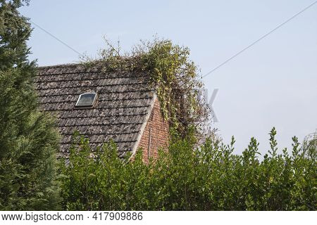Old Roof Of A House Overgrown With Plants And Moss