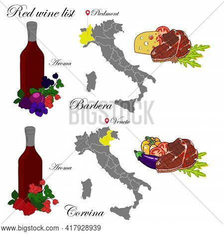 Barbera And Veneto. The Wine List. An Illustration Of A Red Wine With An Example Of Aromas, A Vineya