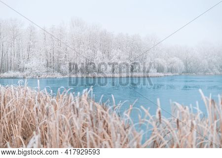 Winter Forest And Frozen Lake Sunset. Panoramic Landscape With Snowy Trees, Sun, Beautiful Frozen Ri