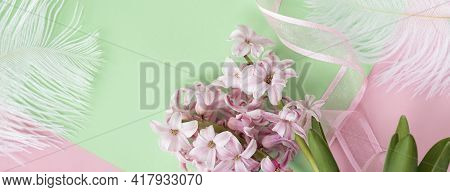 Banner With Two Pink Hyacinth Flowers On Pastel Green And Pink Colors With Pink Ribbon And White Fea