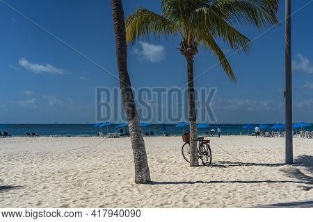Bcycle Leaning On Palm Tree At A White Sandy Beach On Isla Mujeres. Cancun, Mexico