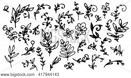 Doodle Set Twigs Curls, Great Design For Any Purposes. Hand Drawn Abstract Vector Set. Hand Drawn Ve