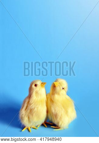 Two Yellow Chicks On A Blue Background.