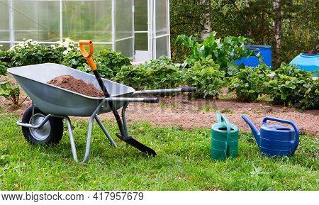 Gardening Landscape. Wheelbarrow, Garden Tools, Greenhouse In The Garden.