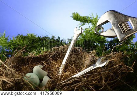 A Conceptual Image For Feeding Time At A Birds Nest Using Wrenches And A Nut For Food.