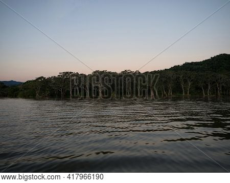 Panorama View Of Green Grass Wetland Shore Of Sauce Lagoon Lake Tarapoto Amazon River Jungle Rainfor