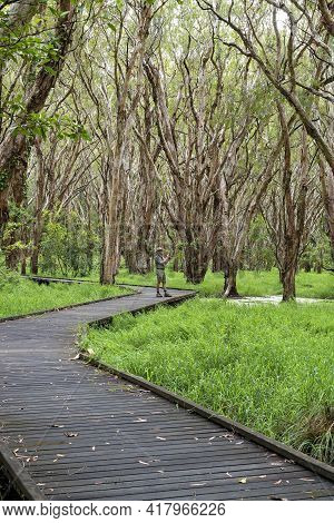 Mackay, Queensland, Australia - March 2021: Man On Walking Track In Forest Taking Photo With Mobile