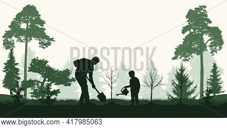 Reforestation, Planting Trees In Forest. Man And Child Plant Bare Tree And Fir Trees, Silhouette. Ve