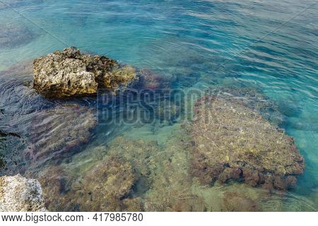 Some Reefs Above &  Under Water Surface. There Are Calm Water, Small Fishes, Water Weeds & Shells. T
