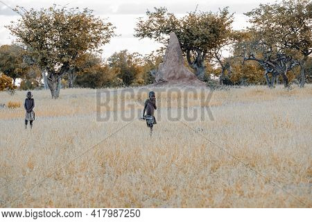 Namibia, Omusati Region, May 7: The Himba Boys In Early Cold Morning In Grassland. The Himba Are Afr