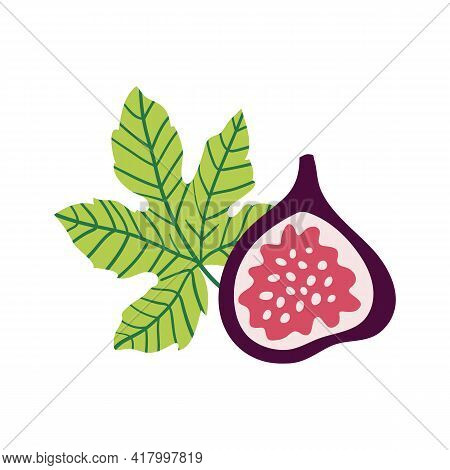 Figs Vector Illustration. Half Of Figs, Seeds And Leaves In Cartoon Style. Isolated On White Backgro