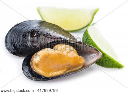One boiled mussel on a white background.