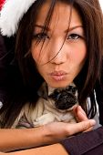 beautiful woman holding cute puppy on an isolated background poster