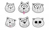 very big size six cats heads pack illustration poster