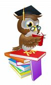 An illustration of a wise owl on a stack of books reading wearing spectacles and a mortar board graduate cap. poster