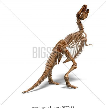 rendering of a t-rex skeleton with Clipping Path and shaow over white poster