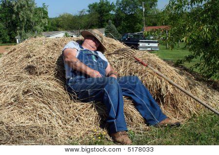 Hay Break