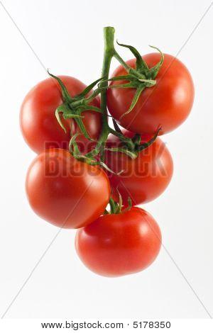 Tomattoes