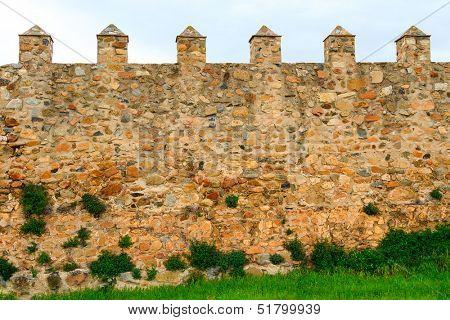 Old wall of the Santa Maria de Poblet cloister, Spain