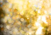 Defocused gold abstract  background  poster