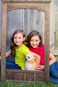 Twin sisters portrait with chihuahua dog on grunge wood border frame sitting on lawn poster