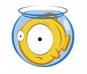 vector illustration of a cartoon fish in a small aquarium. Concept of an uncomfortable position poster