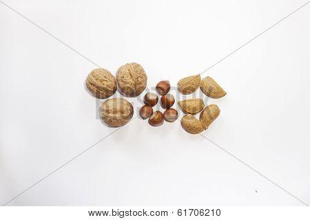 Walnuts, Almonds, Hazelnuts