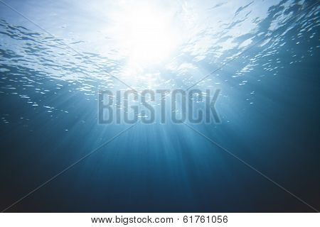 Underwater Light Scene