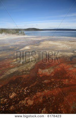 Yellowstone Park - West Thumb Geyser Basin