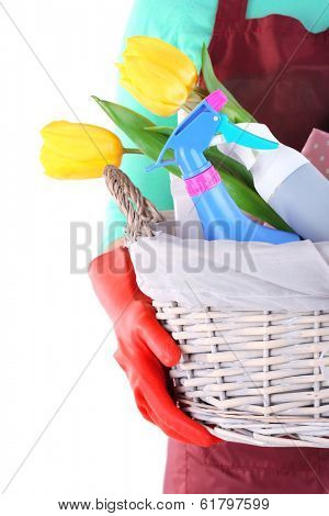 Housewife holding basket with cleaning equipment. Conceptual photo of spring cleaning. Isolated on white