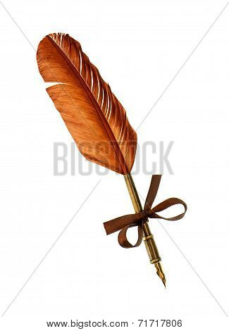 Vintage Feather Ink Pen Isolated On White