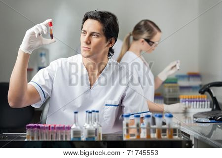 Male technician analyzing blood sample in medical laboratory