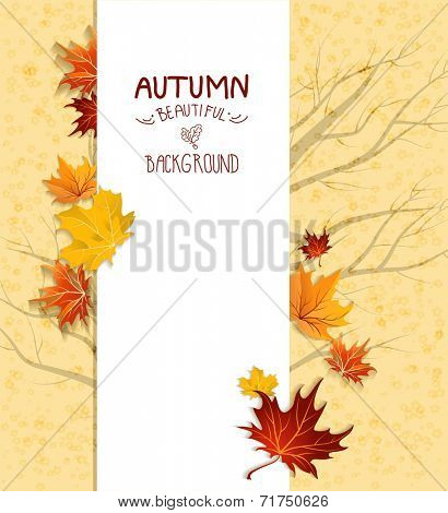 Autumn card with maple leaves. Copy space.
