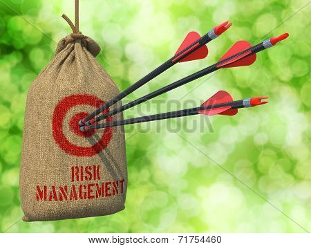 Risk Management - Arrows Hit in Target.