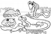 Black and White Cartoon Illustrations of Funny Reptiles and Amphibians Animals Characters Group for Coloring Book poster