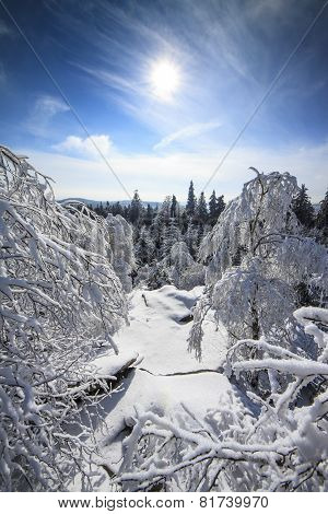 Winter Snowy Landscape View From Mountains Top With Snow, Sun And Blue Sky -  Vertical Photo