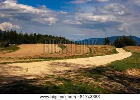 Mountain Fields.