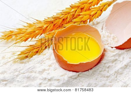 Spikelets Of Wheat With Egg On Flour Spillage.isolated.