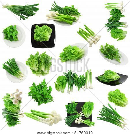 Set Of Young Vegetable- Onion, Garlic .isolated