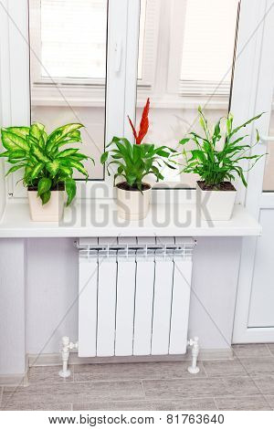 Heating White Radiator  With Flower And Window.