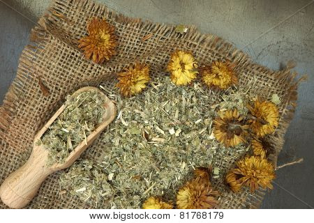 Herbs used in Homeopathy  theraphy with a wooden scoop