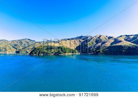 Cook Strait Landscape