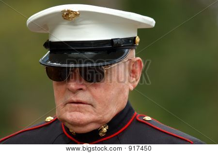 An Old Marine