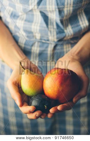 Hands Holding Fresh Organic Fruits. Retro Colors