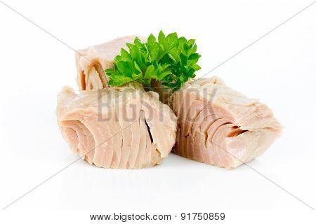tuna isolated