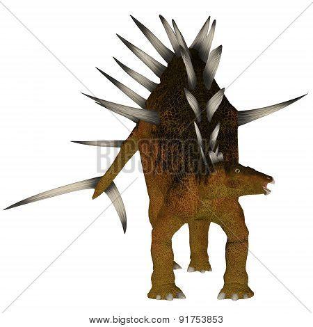 Kentrosaurus Over White